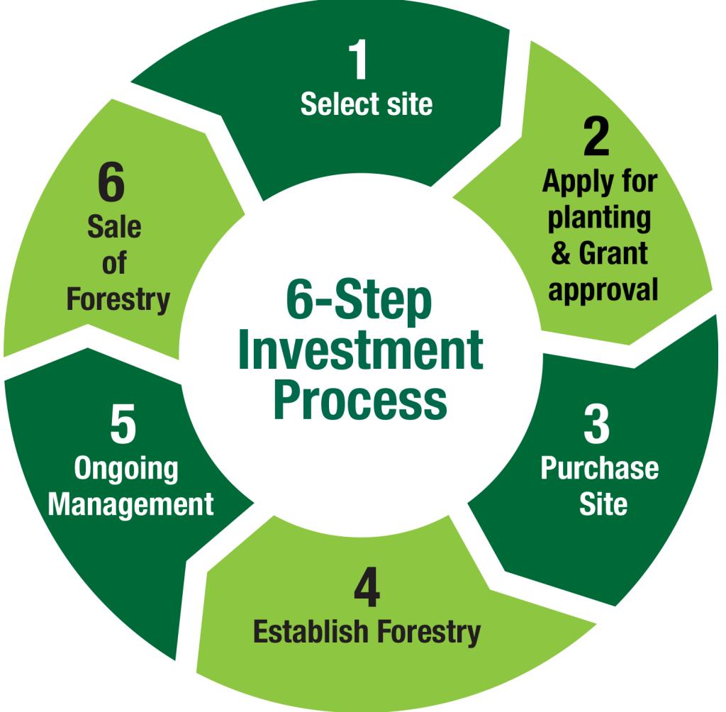 invest-diagram3