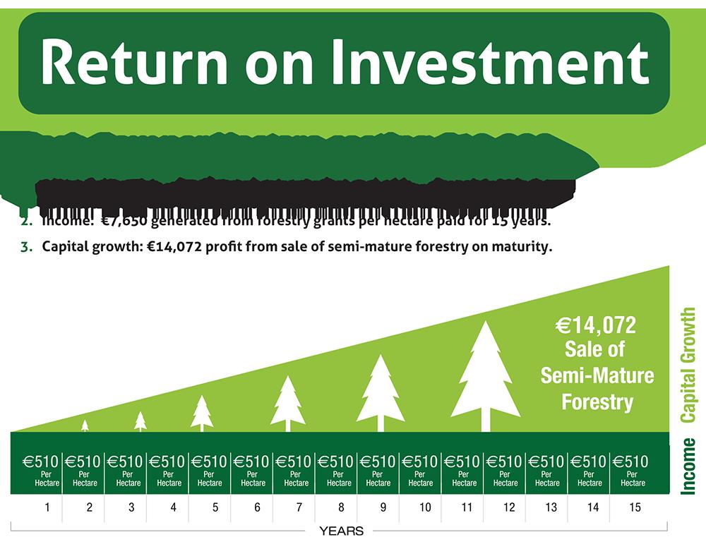 invest-diagram2